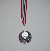 Zilveren_medaille_2_pw_2008_synch_4